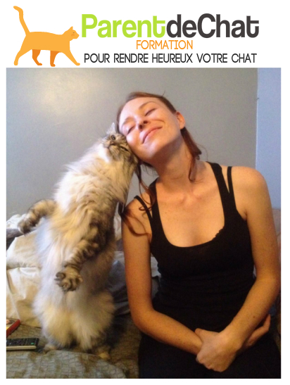 Formation de Parent de Chat