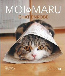 moi maru chat enrobé sur laVieDesChats.com