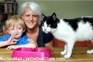 comment faire pour retrouver un chat disparu sur laVieDesChats.com