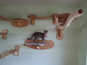 etageres pour chats sur laVieDesChats.com
