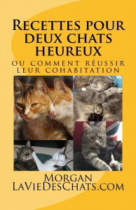 Recettes pour deux chats heureux sur laVieDesChats.com