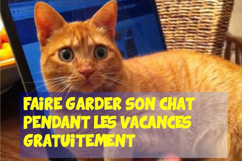 Faire garder son chat pendant les vacances gratuitement - Garder des maisons pendant les vacances ...