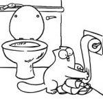 simon's cat dans les toilettes