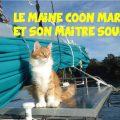 chat Maine Coon et de son maître sourd