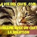 Problème avec un chat ? La solution ici