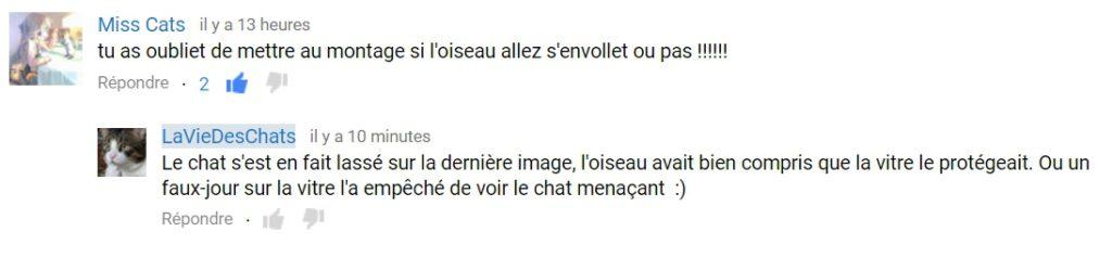 commentaire youtube sur laVieDesChats.com