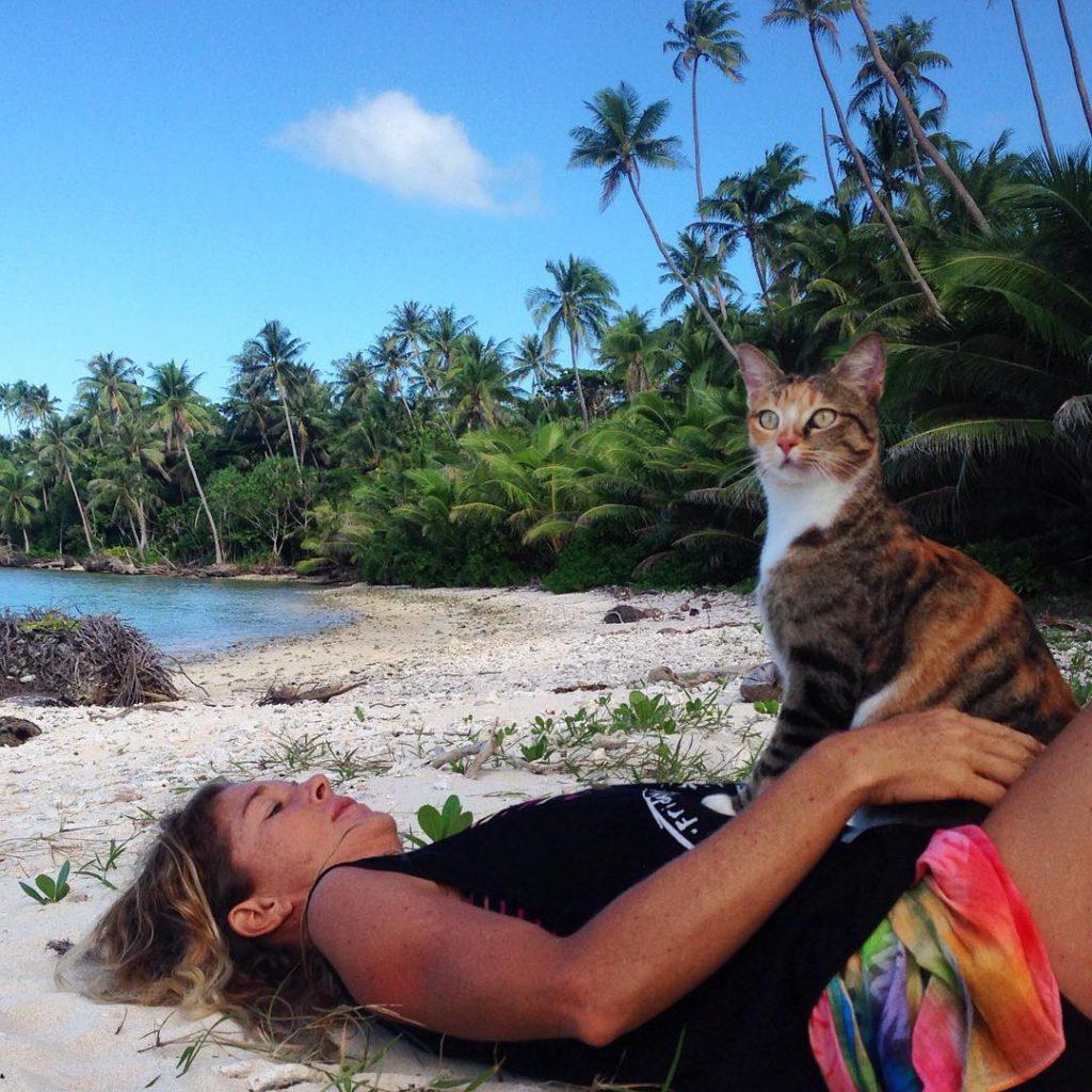 belle histoire de chat amelia et liz