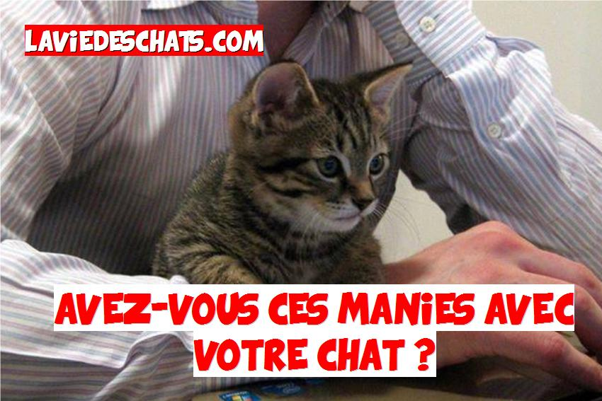 manies avec nos chats