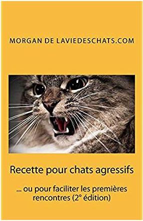 recettes pour chats agressifs