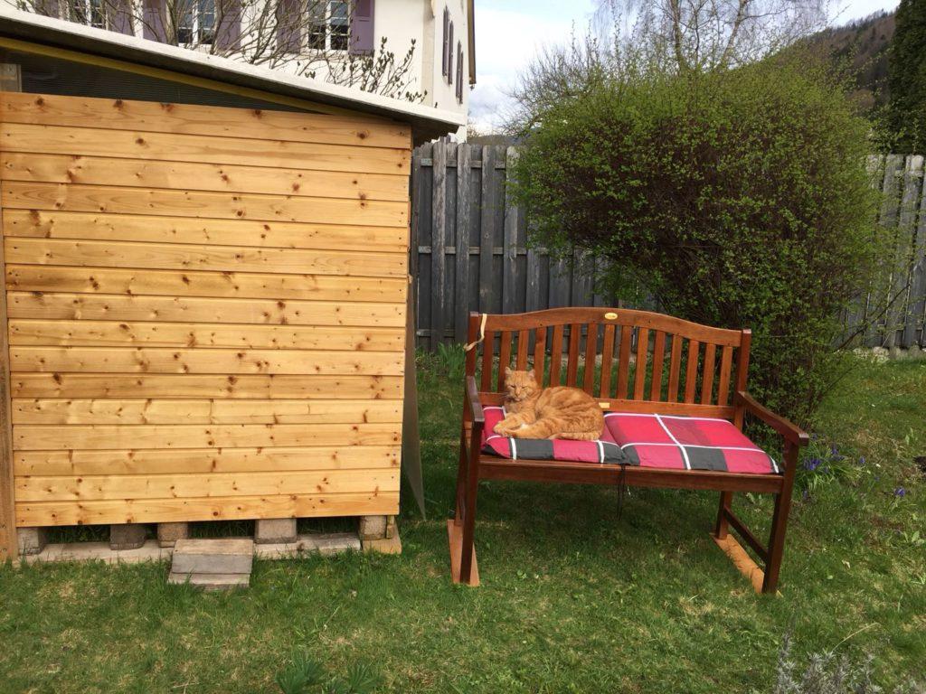 le chat Gribouille se prélasse sur son banc