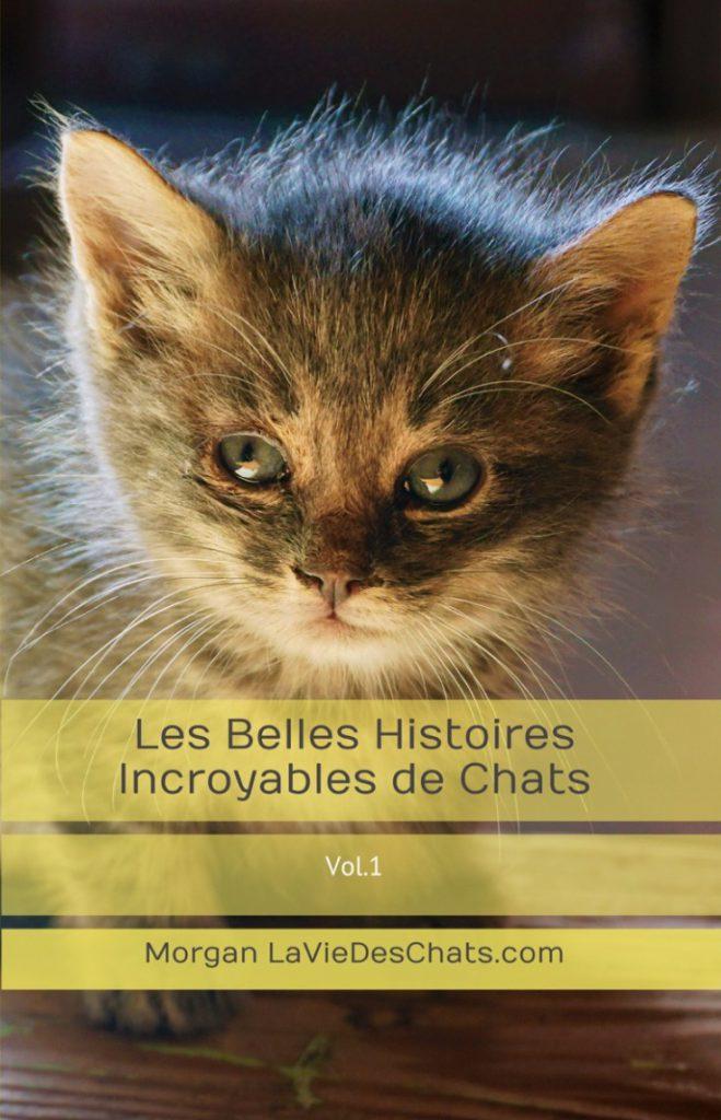 Belles Histoires Incroyables de chats COUVERTURE