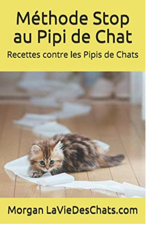 Recettes contre les pipis de chats