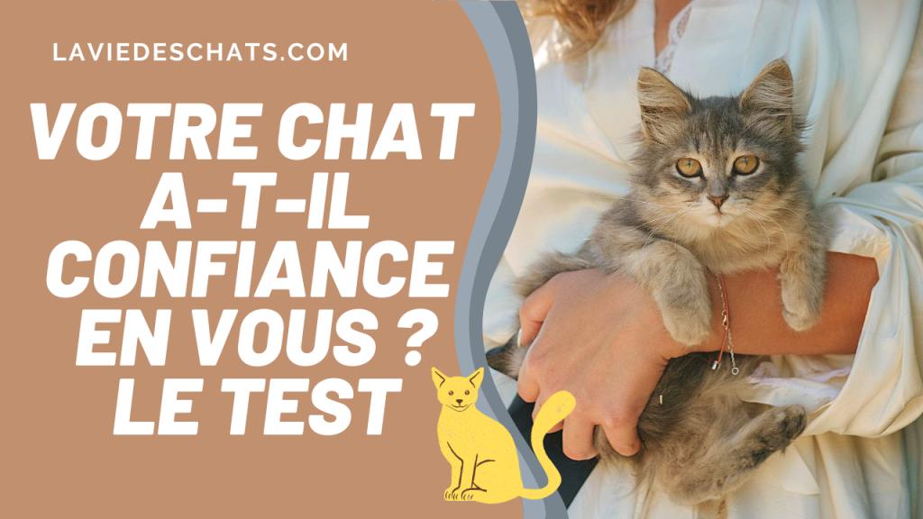 chat a confiance le test