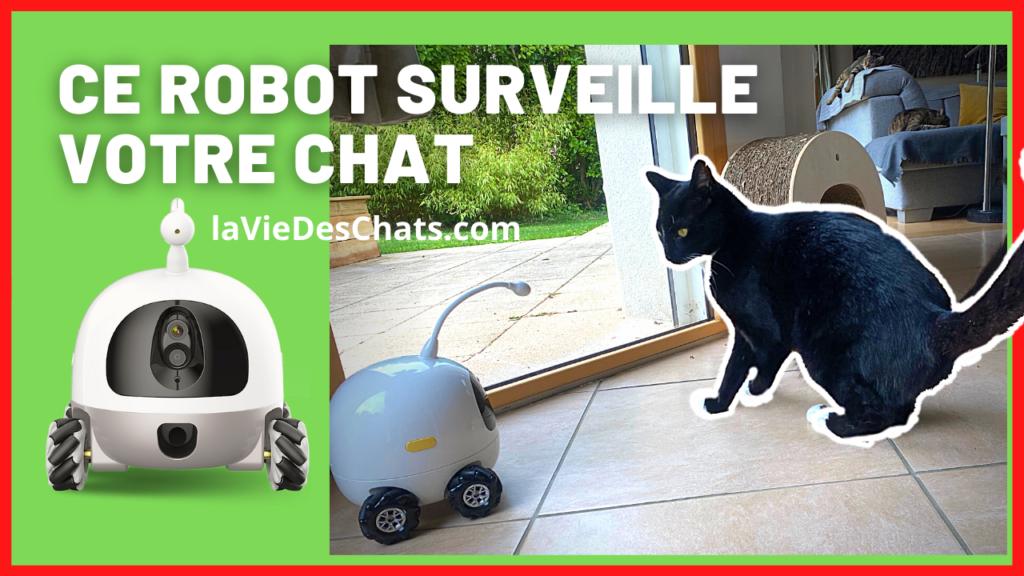 Ce Robot surveille votre chat
