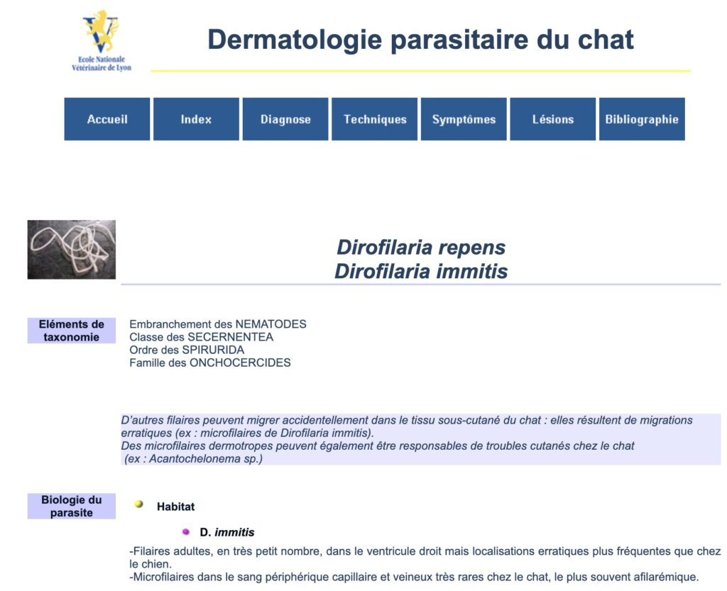 Dirofilaria immitis - Ecole Nationale Vétérinaire de Lyon